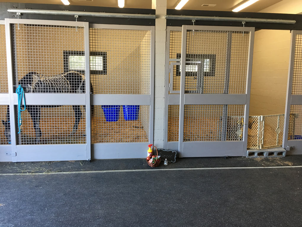 Equine Surgery Stall Evansville IN