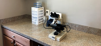 Microscope for Parsite Testing